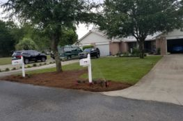 End Of Summer Lawn Care and Lawn Design Featured Image