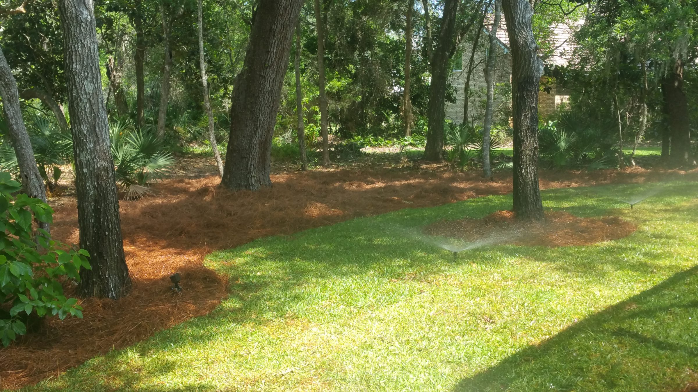 Scenicscape Landscapers - Leaf Clean-Up -01