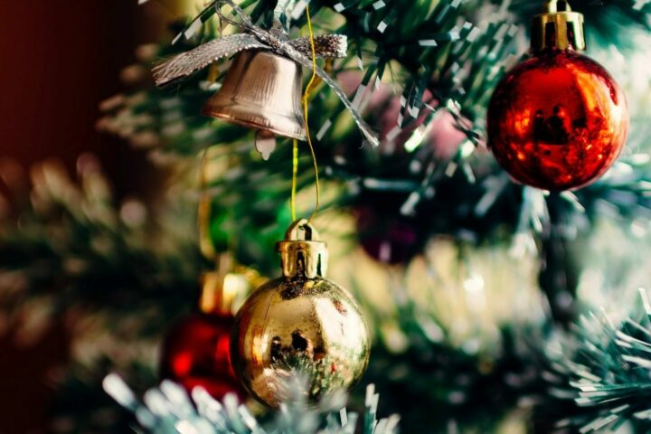 Our Professional Landscapers Wish You A Merry Christmas